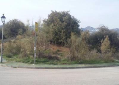 Estudio Geotécnico para construcción de Vivienda Unifamiliar en Urbanización Aguas Blancas, Dudar (Granada).