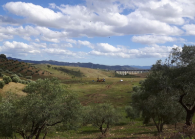 Estudio Geotécnico para Restauración de vertedero del AVE en Término Municipal de Álora (Málaga)