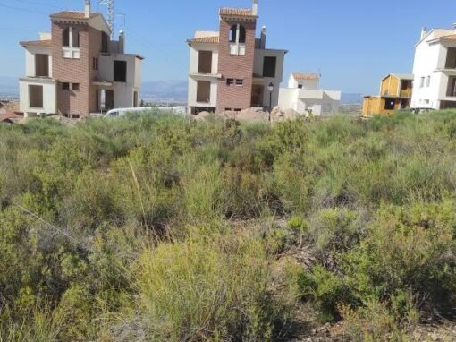 Estudios Geotécnicos para Viviendas Unifamiliares en solares de Urbanización Cañadas del Parque